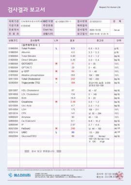 report_sample_02