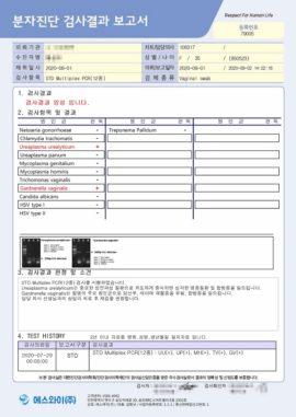 report_sample_03