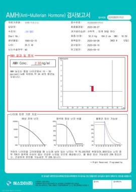report_sample_09